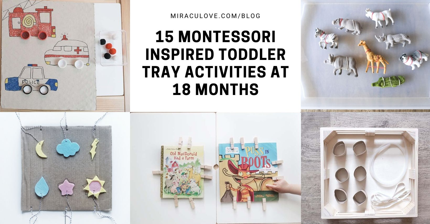 15 Montessori Inspired Toddler Tray Activities at 18 Months