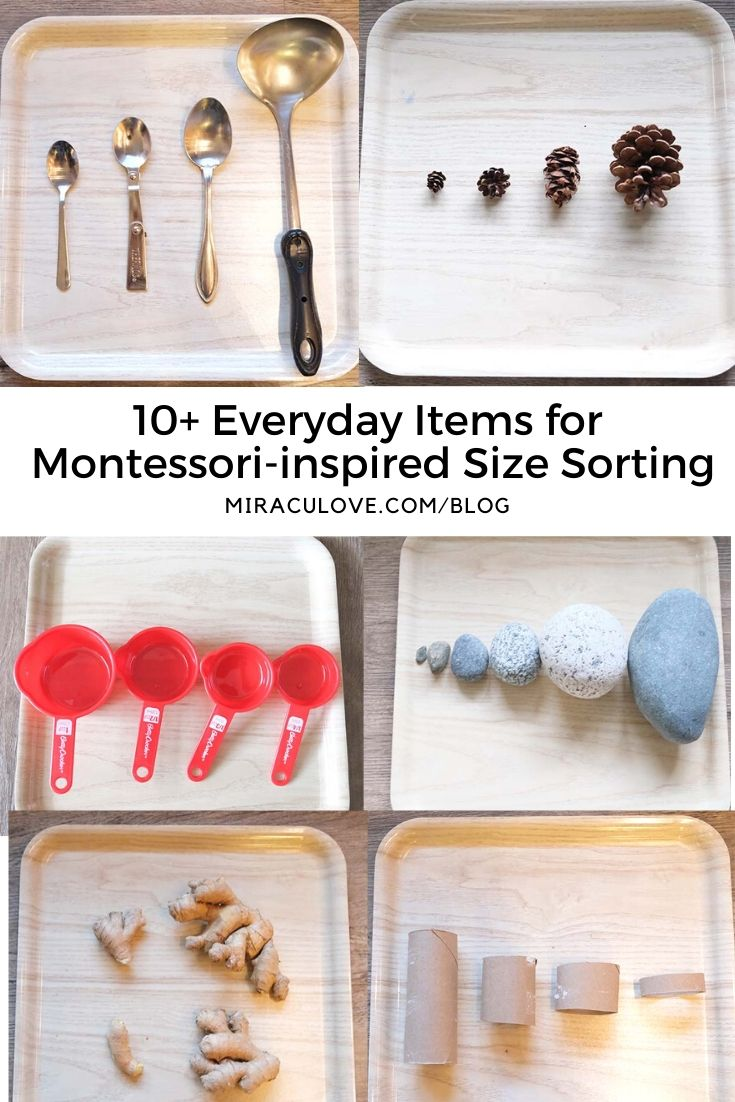 10+ Everyday Items for Montessori-inspired Size Sorting