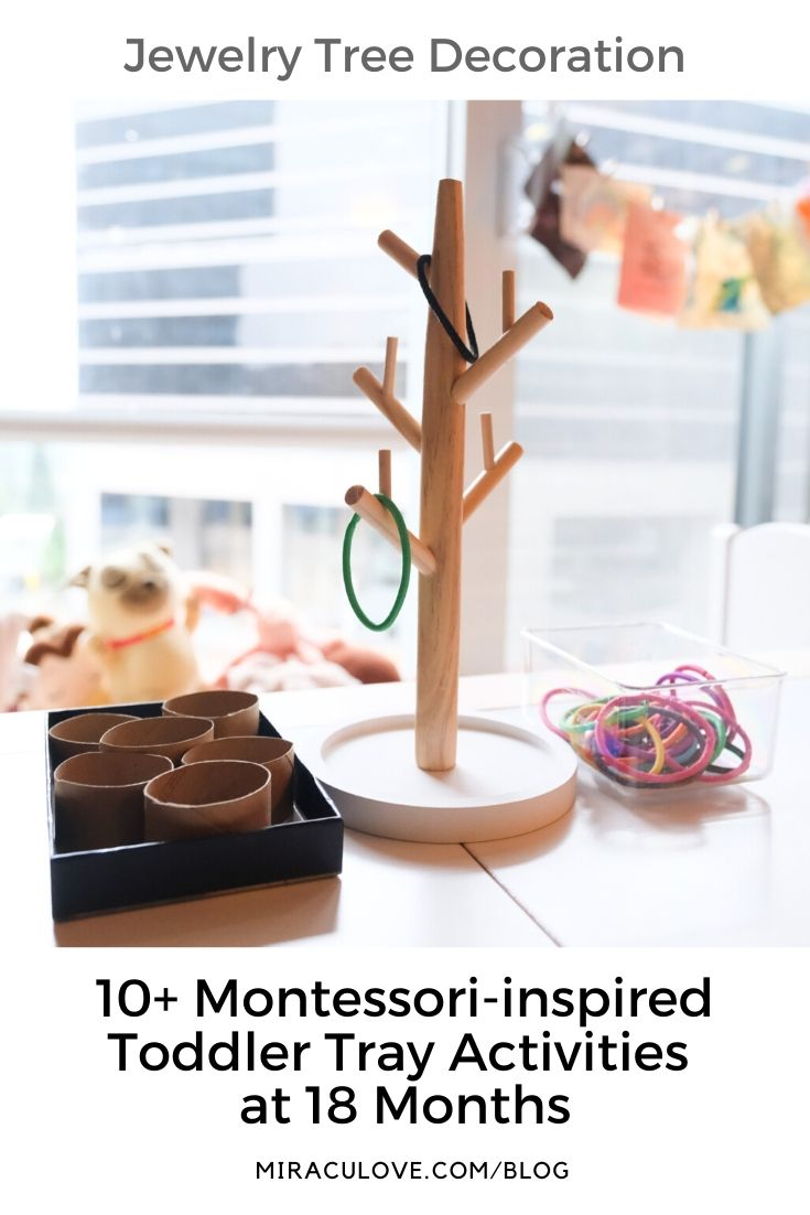 Montessori Inspired Toddler Tray Activities at 18 Months