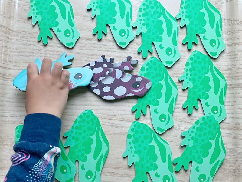 Frog Unit Study for Toddlers (10+ Montessori-friendly Activities)