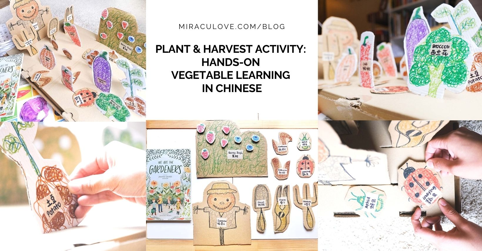 Plant & Harvest Activity: Hands-on Vegetable Learning in Chinese