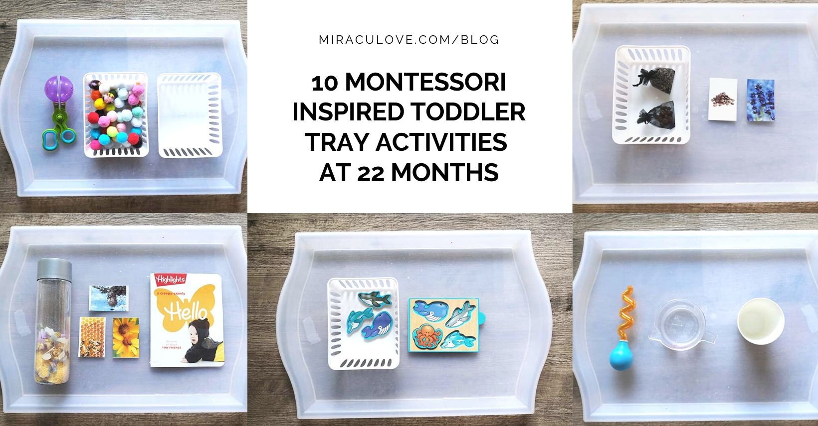10+ Montessori Inspired Toddler Tray Activities at 22 Months