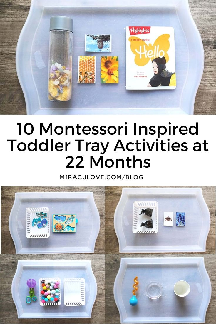10 Montessori Inspired Toddler Tray Activities at 22 Months