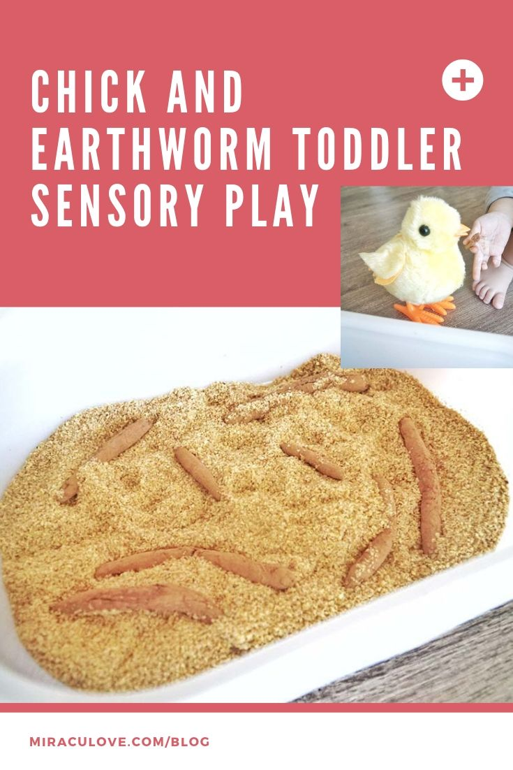 Chick and Earthworm Toddler Sensory Play