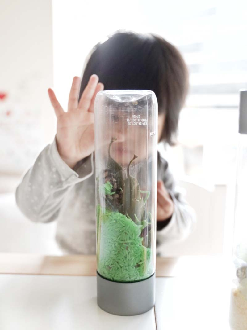 DIY Nature Inspired Sensory Bottles for Toddlers