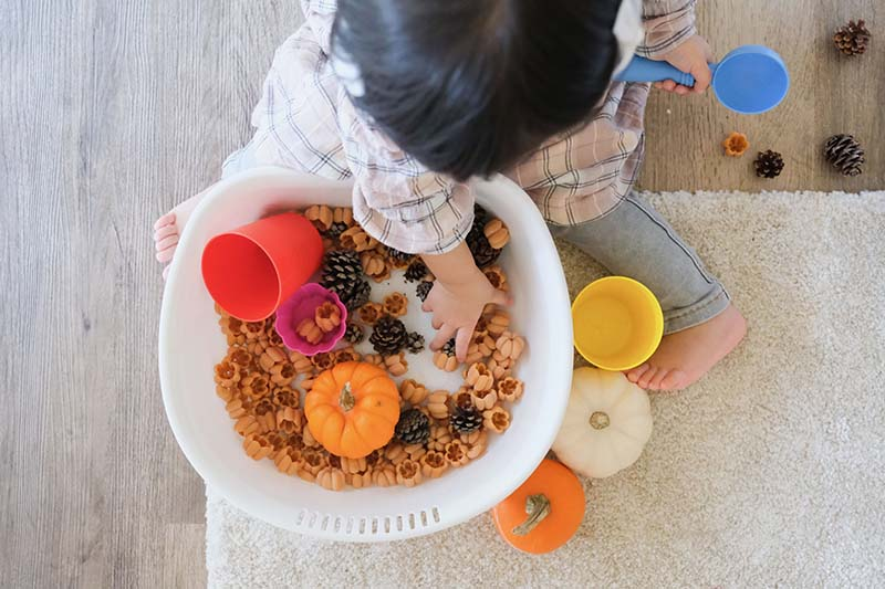 Fall Themed Scoop Transfer & Sort Station for Toddlers