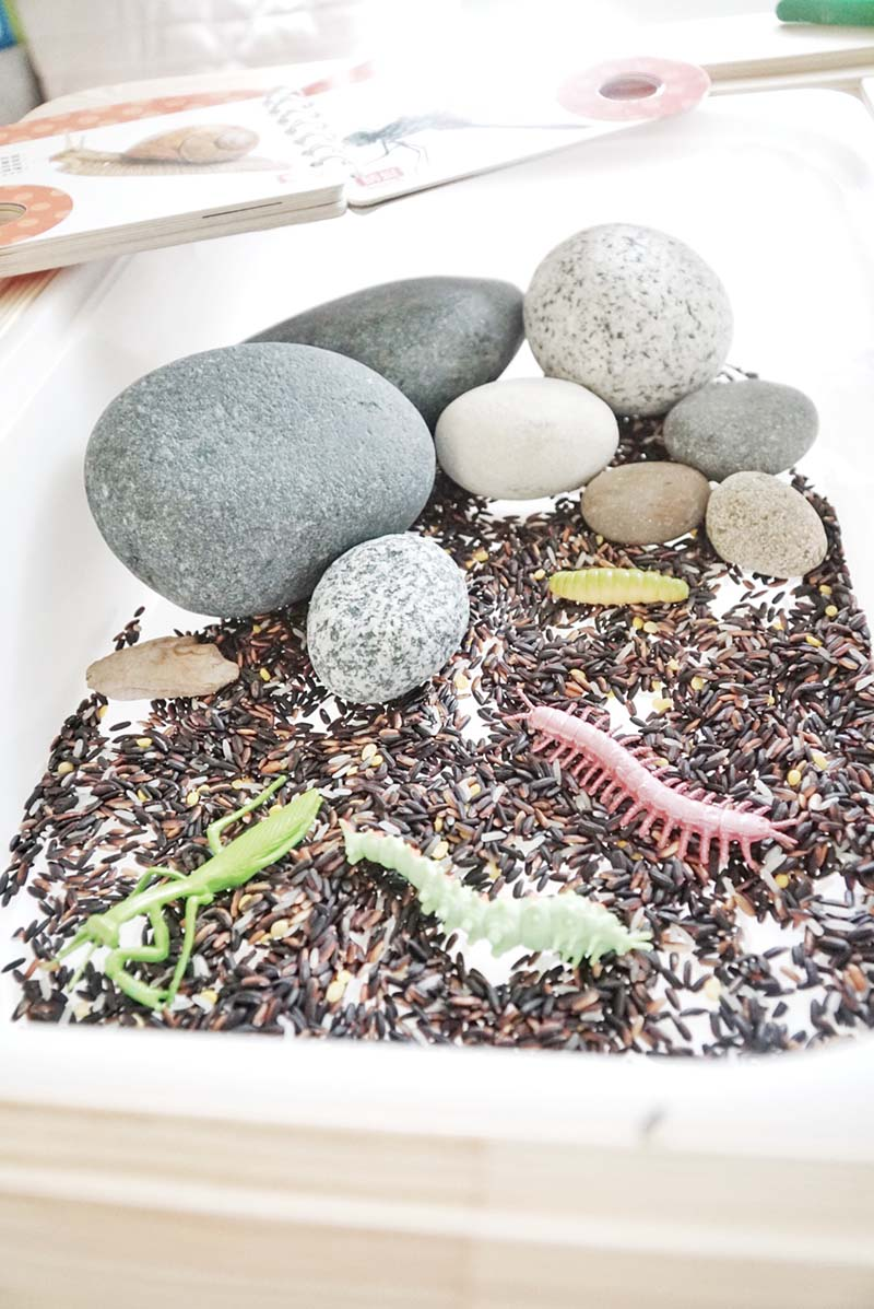 Insect Sensory Small World for Toddlers