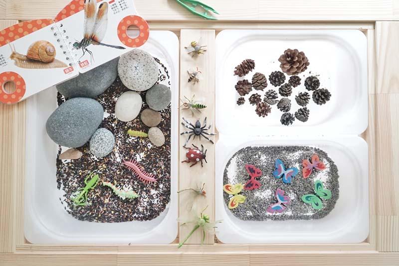 Miraculove Insect Sensory Small World