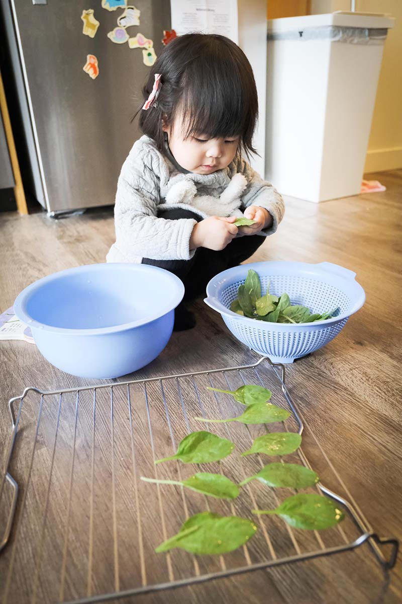 Making Spinach Chips with Young Toddler