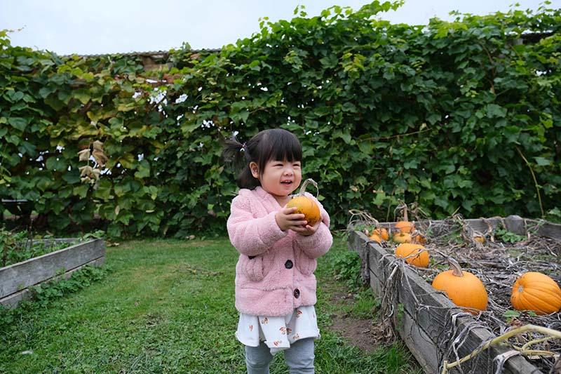 Oxbow Farm WA Visit with Toddler