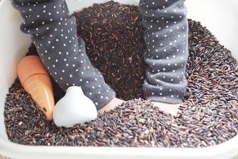 Vegetable Garden Sensory Bin for Toddlers
