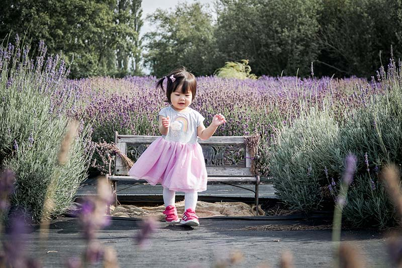 Visiting Lavender Connection Sequim with Toddler