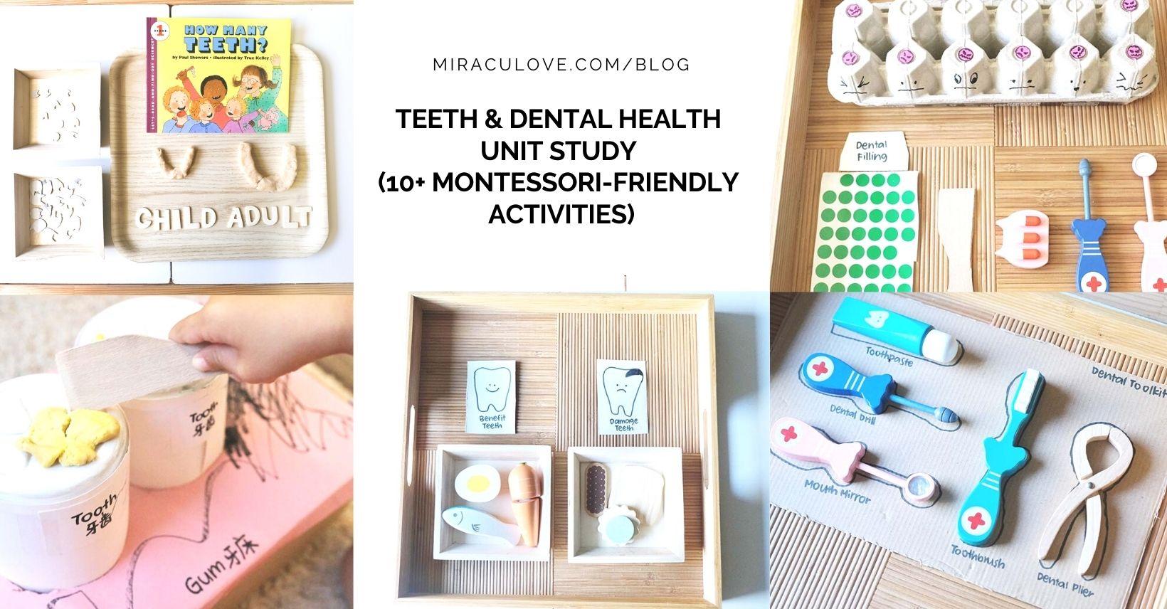 Teeth & Dental Health Unit Study (10+ Montessori-friendly Activities)